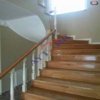 omurgalı-merdiven-82